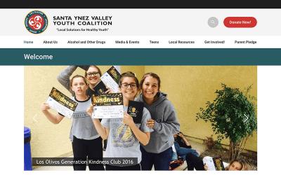 SYV Youth Coalition